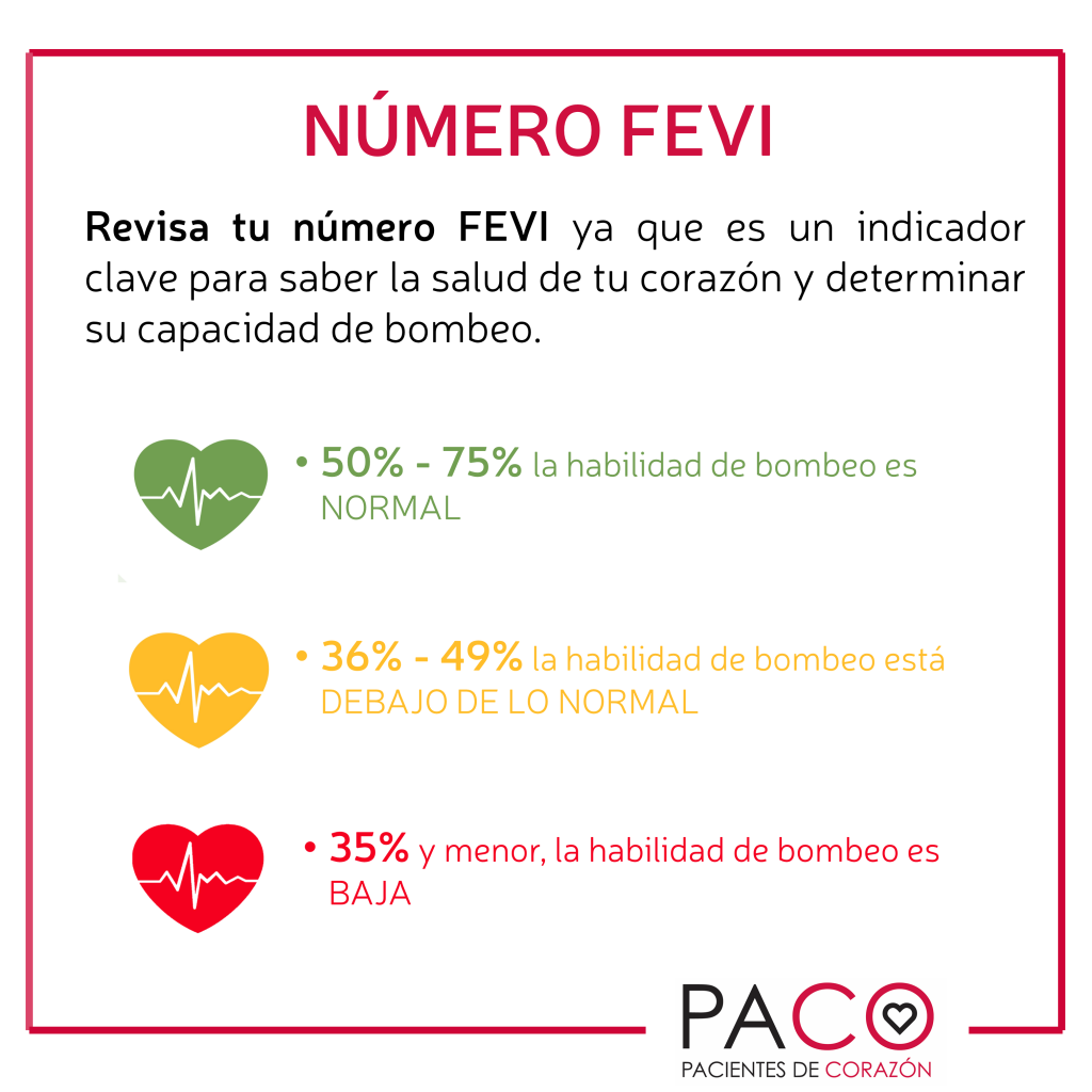131218 FEVI PACO3 (003)